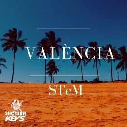 STeM ~ Valencia